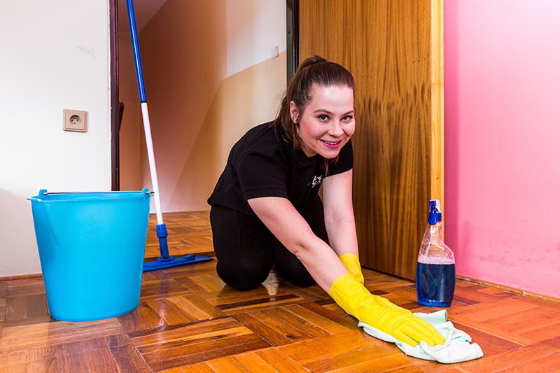 Employment Form Member of Housekeeping Staff Cleaning